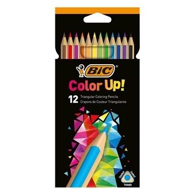 Bic Üçgen Kuru Boya Kalemi 12li Kutu Renkli